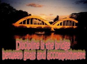 disiplineisbridge